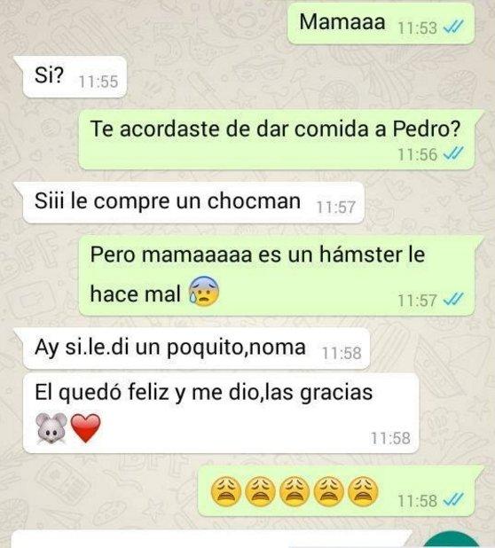 9. chocohamster